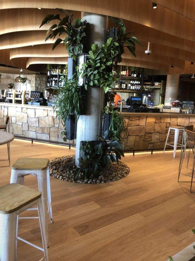 p-Northern-Beaches-Restaurant-Plumbing-Experts-Priority-Plus-Plumbing-8-e1543364678641